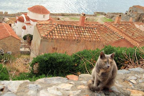 Monemvasia'nın sayısız kedisi ve manzarası